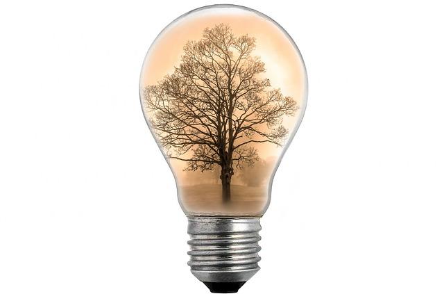 foto žárovky